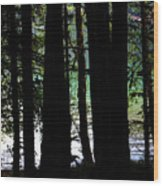 Beach Forest Wood Print
