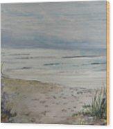 Beach Front Wood Print by Dorothy Herron