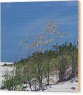 Beach Grass 3 Wood Print