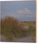 Beach Grass I I Wood Print