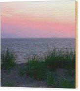 Beach Grass On Long Island Sound Wood Print