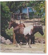Beach Horses Wood Print