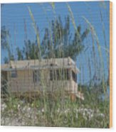 Beach House Through Sea Oats Wood Print