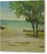Beach In Anna Maria Florida Wood Print