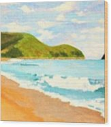Beach In Brazil Wood Print