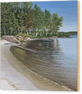 Beach In Muskoka Wood Print