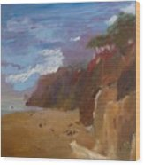 Beach In Santa Barbara Wood Print