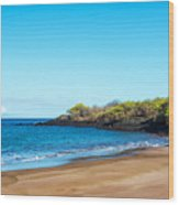 Beach In The Galapagos Wood Print