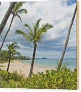 Beach On Maui 23 Wood Print