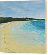 Beach On Norman's Island Wood Print