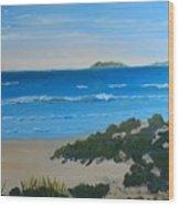 Beach On The North Coast Of Nsw  Wood Print
