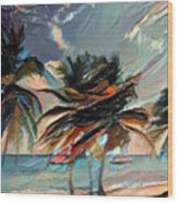 Beach Palms - Multi 9a Wood Print