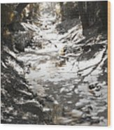 Beach Park Storm Drain Wood Print