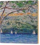 Beach Park View Wood Print
