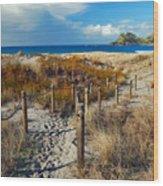 Beach Path 2 Wood Print