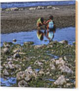 Beach Play Wood Print