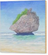 Beach Rock  Wood Print