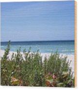 Beach Scene 6 Wood Print