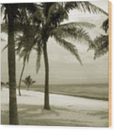 Beach Scene In Key West Wood Print