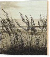 Beach - Sepia Wood Print