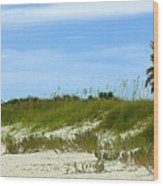 Beach Solitude Wood Print