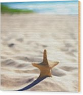 Beach Starfish Wood Texture Wood Print
