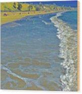 Beach Summer Midday Midweek Wood Print