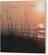 Beach Sun Wood Print