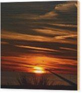 Beach Sunset Alabama Wood Print