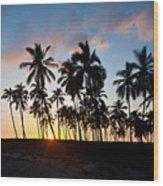 Beach Sunset Wood Print by Mike Reid