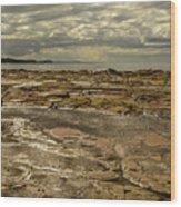 Beach Syd02 Wood Print