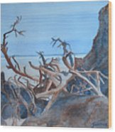 Beach Tangle Wood Print