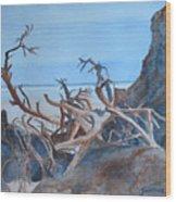 Beach Tangle Wood Print