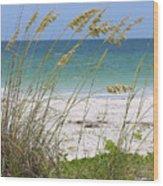 Beach Through Sea Oats Wood Print