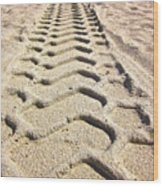 Beach Tracks Wood Print
