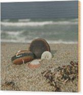 Beach Treasures 1 Wood Print