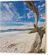 Beach View Carmel By The Sea California Wood Print by George Oze
