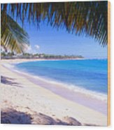 Beach View Under A Palm Tree Wood Print by George Oze