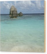 Beach With Big Rock Ahead Vertical Bermuda Wood Print