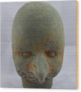 Beak Baby  Wood Print