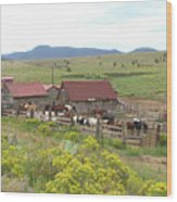 Bear Basin Ranch Wood Print