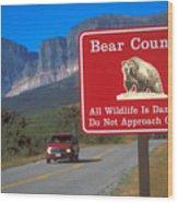 Bear Country In Montana Wood Print