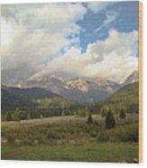 Bear Country Wood Print