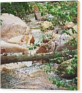 Bear Creek Cheyenne Canyon Wood Print
