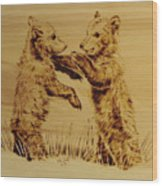 Bear Cubs Wood Print
