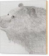 Bear In Water Wood Print