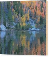 Bear Lake Colorado Poster Wood Print