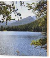 Bear Lake Rmnp Wood Print