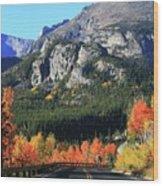 Bear Lake Road In Autumn Wood Print