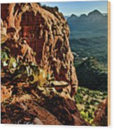 Bear Mountain 06-118 Wood Print